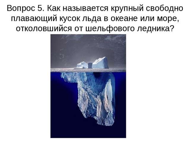 Вопрос 5. Как называется крупный свободно плавающий кусок льда в океане или м...