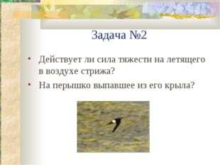 Задача №2 Действует ли сила тяжести на летящего в воздухе стрижа? На перышко