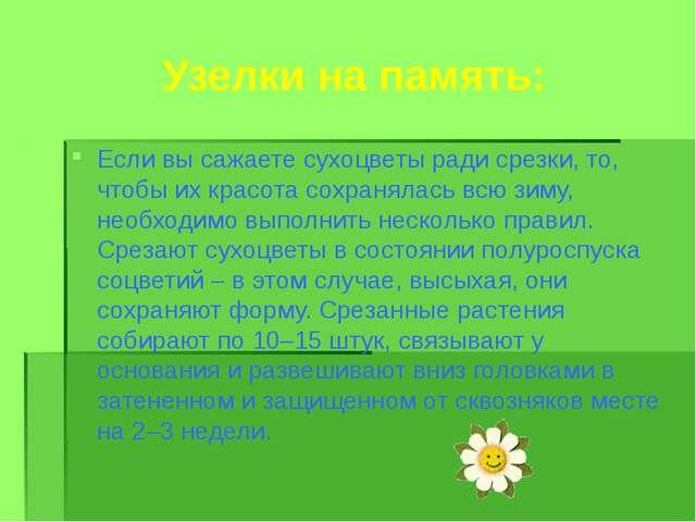 Узелки на память: Если вы сажаете сухоцветы ради срезки, то, чтобы их красота...