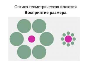 Оптико-геометрическая иллюзия Восприятие размера