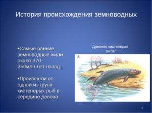* История происхождения земноводных Самые ранние земноводные жили около 370-3