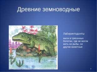 * Древние земноводные Лабиринтодонты жили в трясинных болотах, где не могли ж