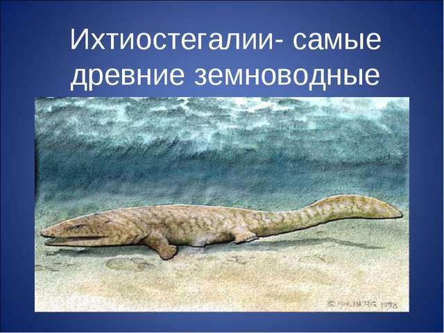 Ихтиостегалии- самые древние земноводные