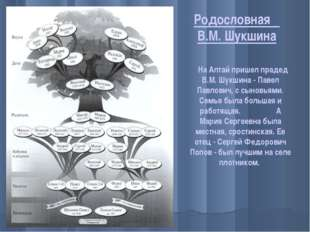 Родословная В.М. Шукшина На Алтай пришел прадед В.М. Шукшина - Павел Павлович