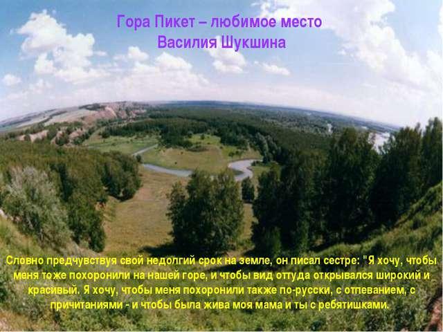 Гора Пикет – любимое место Василия Шукшина Словно предчувствуя свой недолгий...