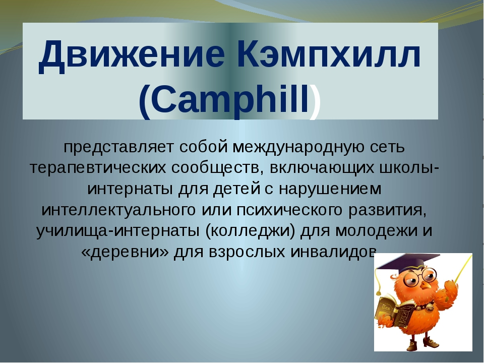 Движение Кэмпхилл (Camphill) представляет собой международную сеть терапевтич...