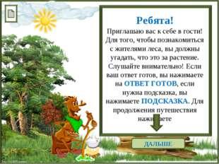 http://linda6035.ucoz.ru/ ДАЛЬШЕ Ребята! Приглашаю вас к себе в гости! Для то