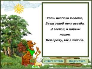 http://linda6035.ucoz.ru/ Хоть неплохо я одета, Бьет озноб меня всегда. И в