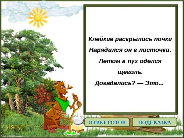 http://linda6035.ucoz.ru/ Клейкие раскрылись почки Нарядился он в листочки. Л...