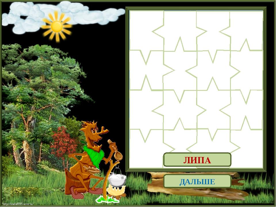 ДАЛЬШЕ ЛИПА http://linda6035.ucoz.ru/ http://linda6035.ucoz.ru/