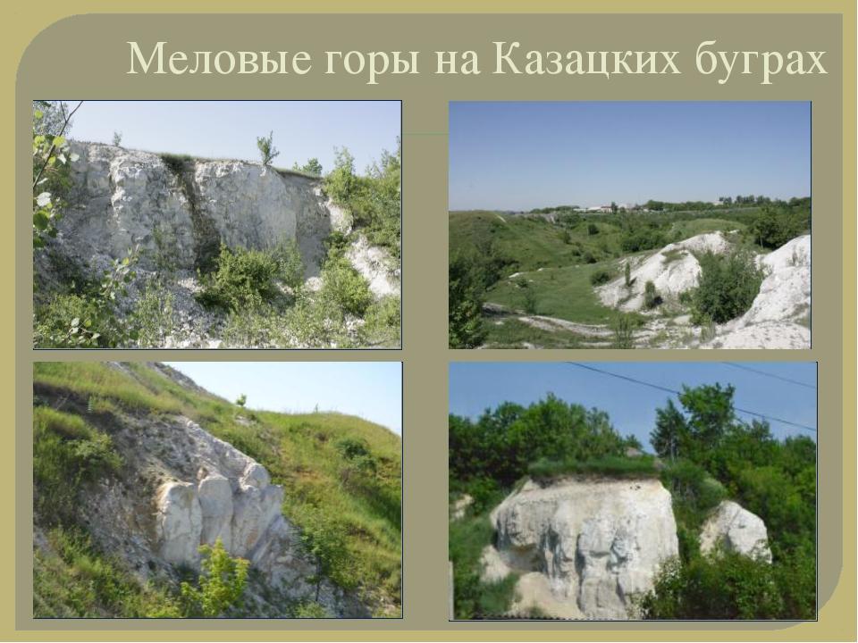 Меловые горы на Казацких буграх