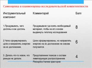 Самооценка и взаимооценка исследовательской компетентности Инструментальный к