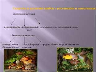 Сходства и различия грибов с растениями и животными: а) признаки растений неп