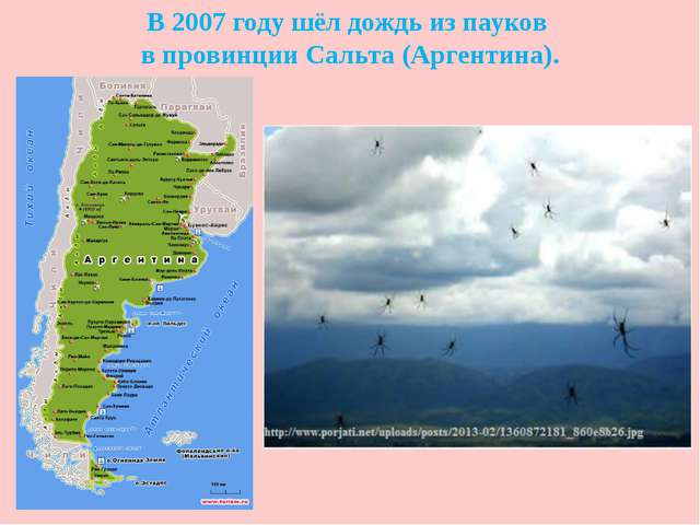 В 2007 году шёл дождь из пауков в провинции Сальта (Аргентина).