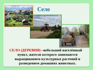 Село СЕЛО (ДЕРЕВНЯ) –небольшой населённый пункт, жители которого занимаются в