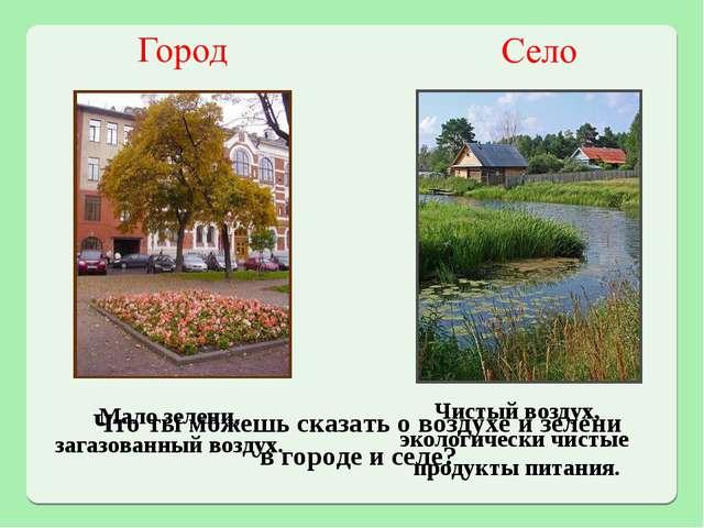 Что ты можешь сказать о воздухе и зелени в городе и селе? Мало зелени, загазо...