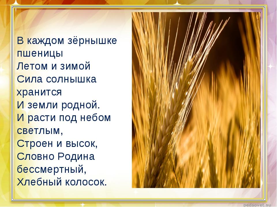 В каждом зёрнышке пшеницы Летом и зимой Сила солнышка хранится И земли родной...