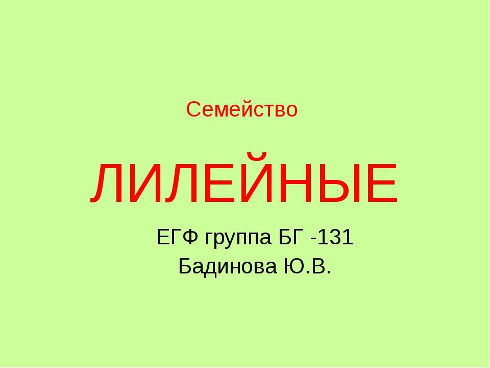 Семейство ЛИЛЕЙНЫЕ ЕГФ группа БГ -131 Бадинова Ю.В.