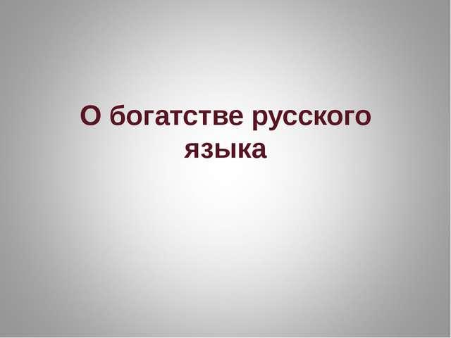 О богатстве русского языка