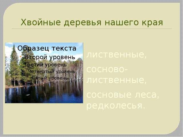 Хвойные деревья нашего края лиственные, сосново-лиственные, сосновые леса, ре...