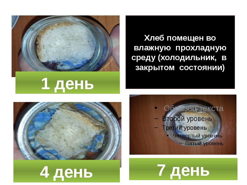 Хлеб помещен во влажную прохладную среду (холодильник, в закрытом состоянии)...