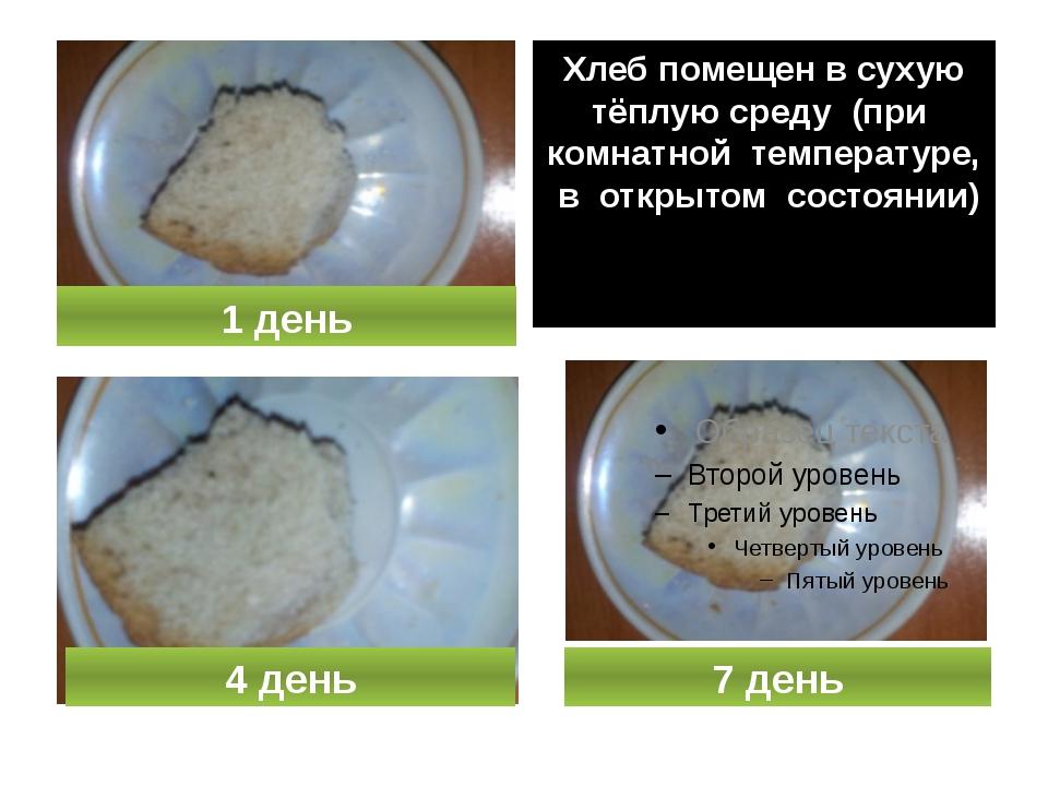 Хлеб помещен в сухую тёплую среду (при комнатной температуре, в открытом сос...