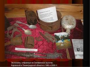 Экспонаты, собранные на Синявинских высотах, Кировской и Ленинградской област