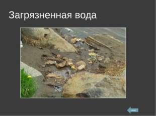 Загрязненная вода назад