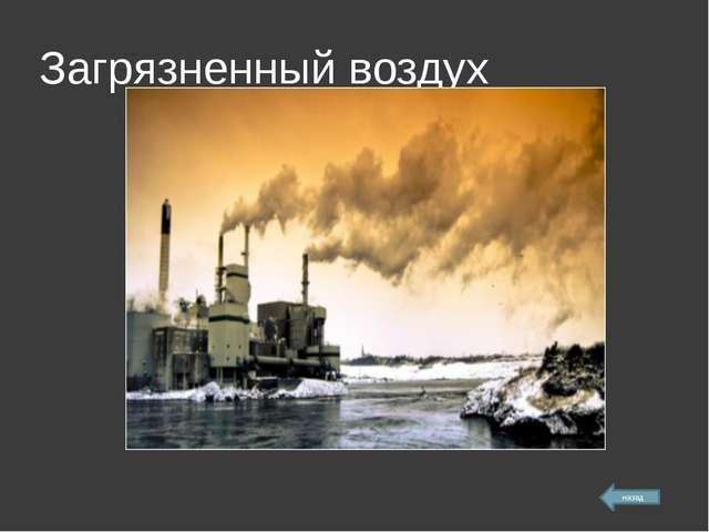 Загрязненный воздух назад
