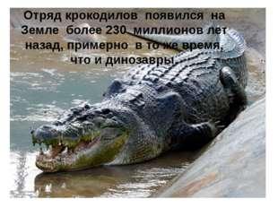 Отряд крокодилов появился на Земле более 230 миллионов лет назад, примерно в