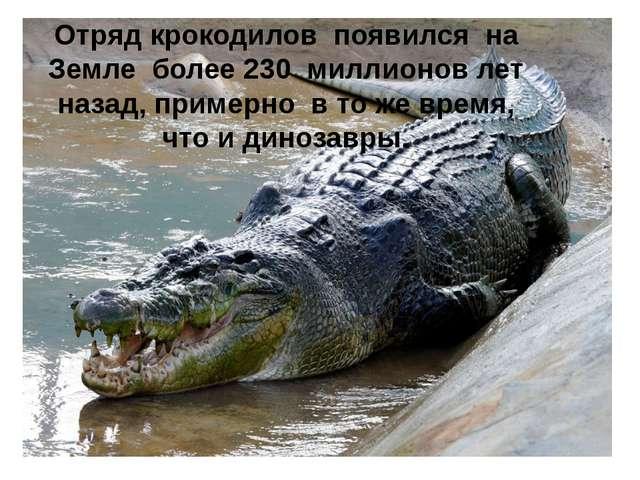 Отряд крокодилов появился на Земле более 230 миллионов лет назад, примерно в...