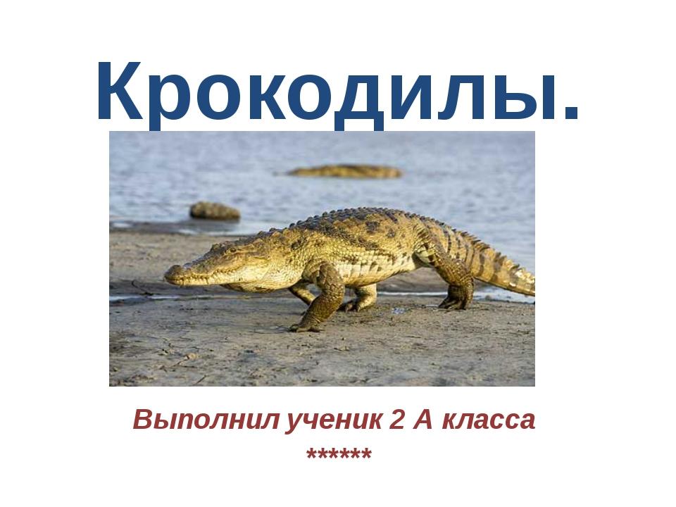Крокодилы. Выполнил ученик 2 А класса ******