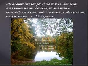 «Не в одних стихах разлита поэзия: она везде. Взгляните на эти деревья, на эт