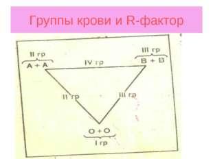 Группы крови и R-фактор