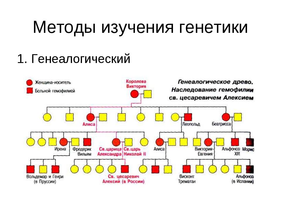 Методы изучения генетики 1. Генеалогический