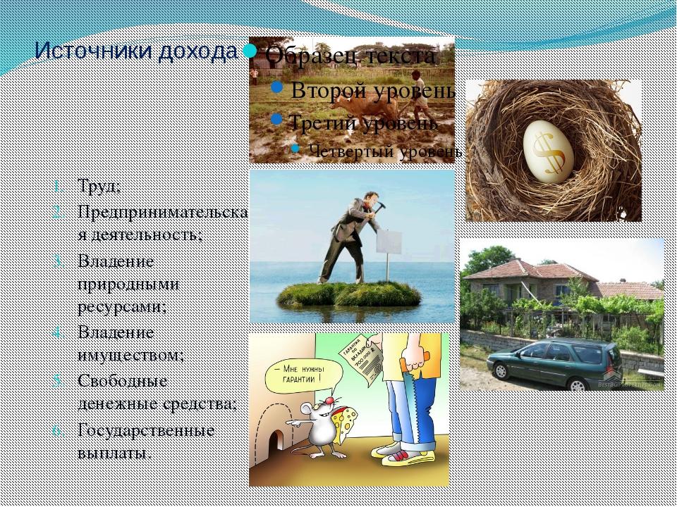 Источники дохода Труд; Предпринимательская деятельность; Владение природными...