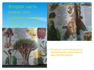 Вторая часть книги -это удивительный мир растений В третьей части описываетс
