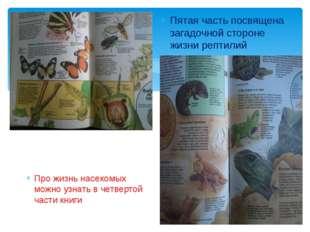 Про жизнь насекомых можно узнать в четвертой части книги Пятая часть посвяще