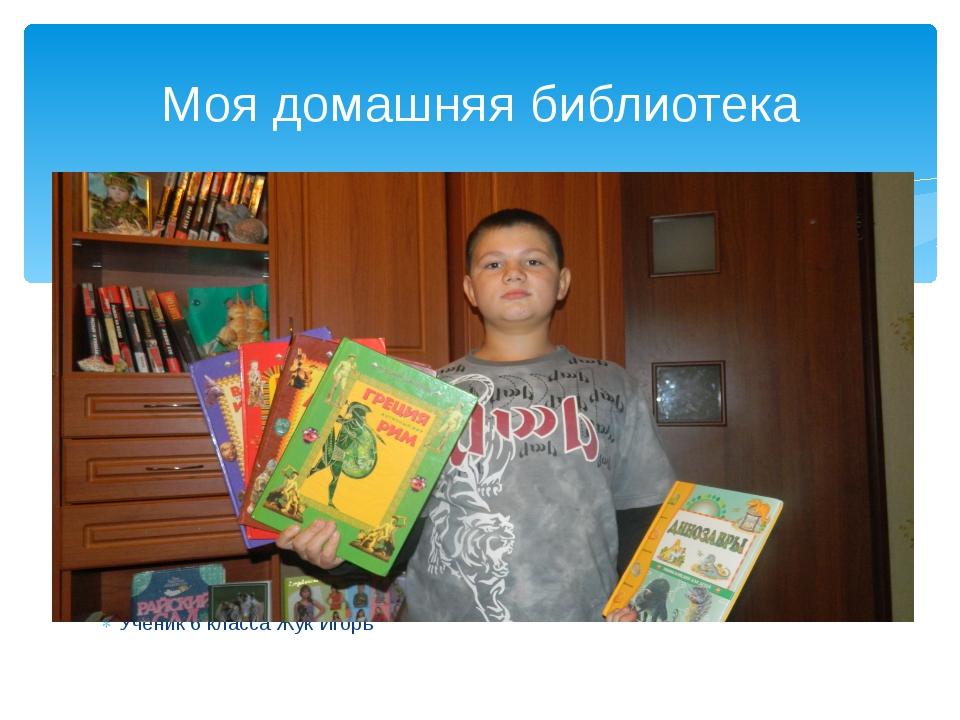 Ученик 6 класса Жук Игорь Моя домашняя библиотека