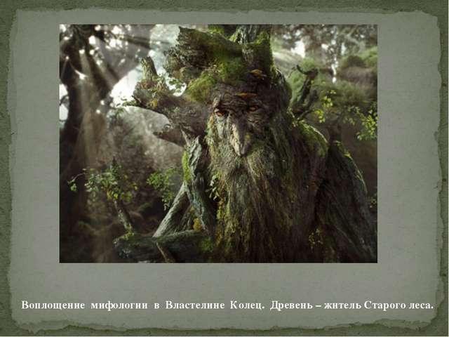 Воплощение мифологии в Властелине Колец. Древень – житель Старого леса.