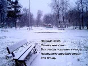 Пришла зима. Стало холодно. Вся земля покрыта снегом. Наступило трудное время