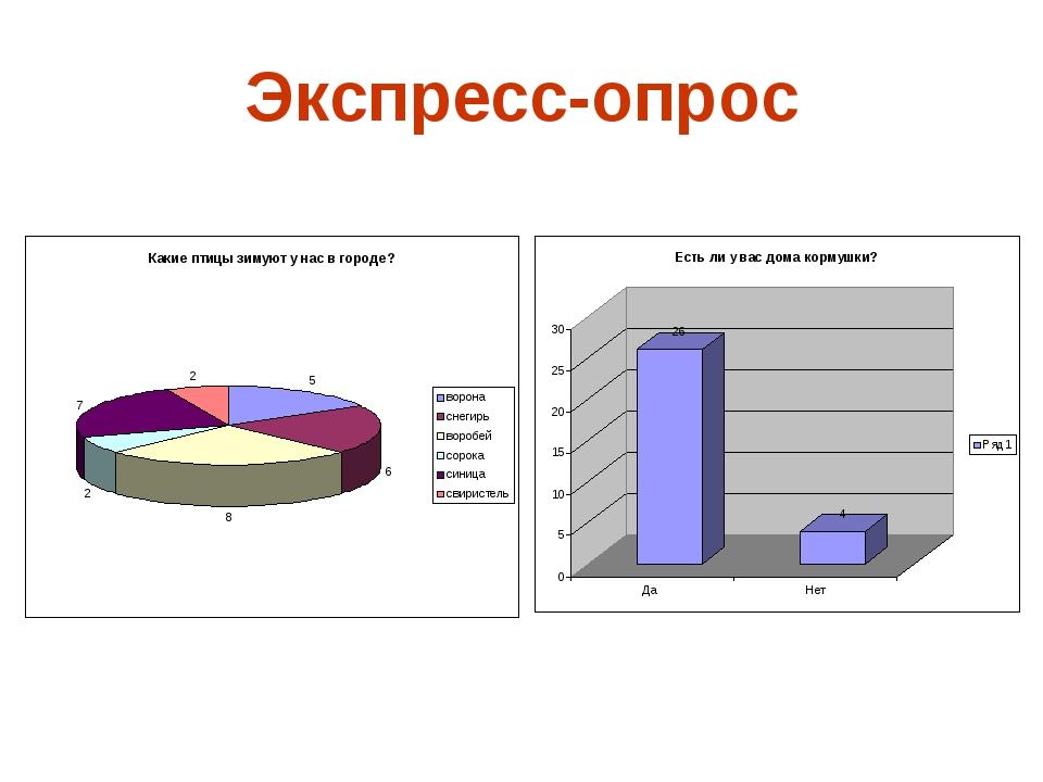 Экспресс-опрос