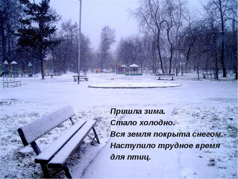 Пришла зима. Стало холодно. Вся земля покрыта снегом. Наступило трудное время...