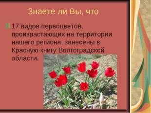 Знаете ли Вы, что 17 видов первоцветов, произрастающих на территории нашего
