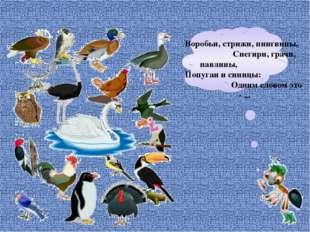 Воробьи, стрижи, пингвины, Снегири, грачи, павлины, Попугаи и синицы: Одним