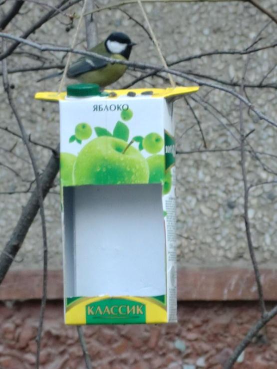 E:\Мои документы\Начальная школа\през покормите птиц\Изображение 008.jpg
