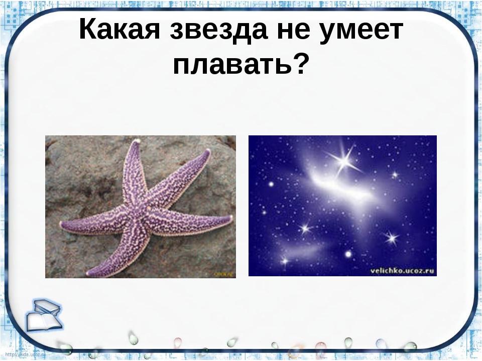 Какая звезда не умеет плавать?