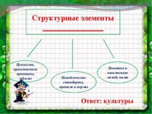 Структурные элементы ________________ Поведенческие стандарты, правила и норм