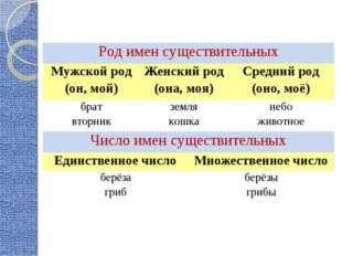 Род имен существительных Мужской род (он, мой)Женский род (она, моя)Средни