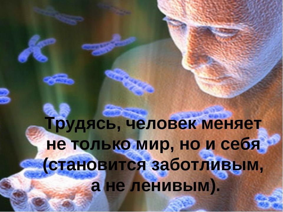 Трудясь, человек меняет не только мир, но и себя (становится заботливым, а не...